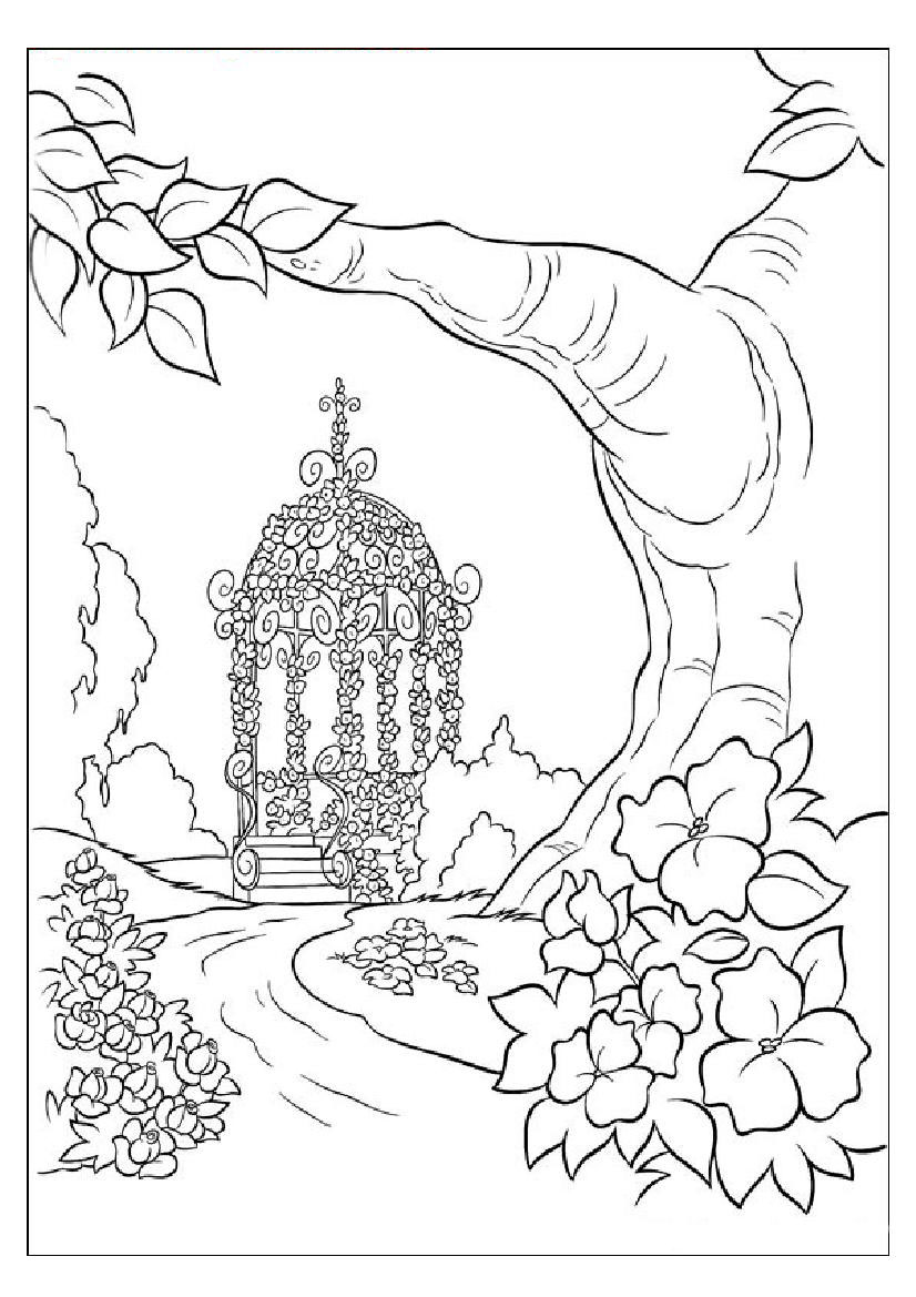 826x1169 Nature Coloring Pages Adult Nature Coloring Pages Printable
