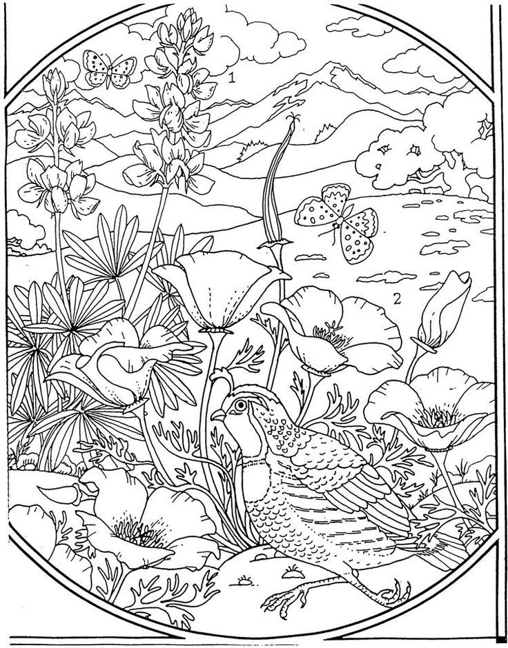 736x940 Flowers Coloring Page Coloring Outside The Lines