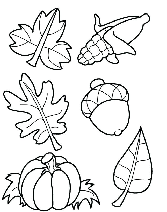 645x818 Leaf Coloring Maple Leaf Coloring Page Printable Leaves Coloring