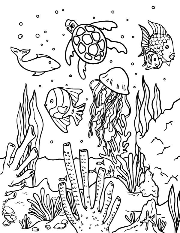 image regarding Free Printable Ocean Coloring Pages known as Totally free Printable Ocean Coloring Webpages at
