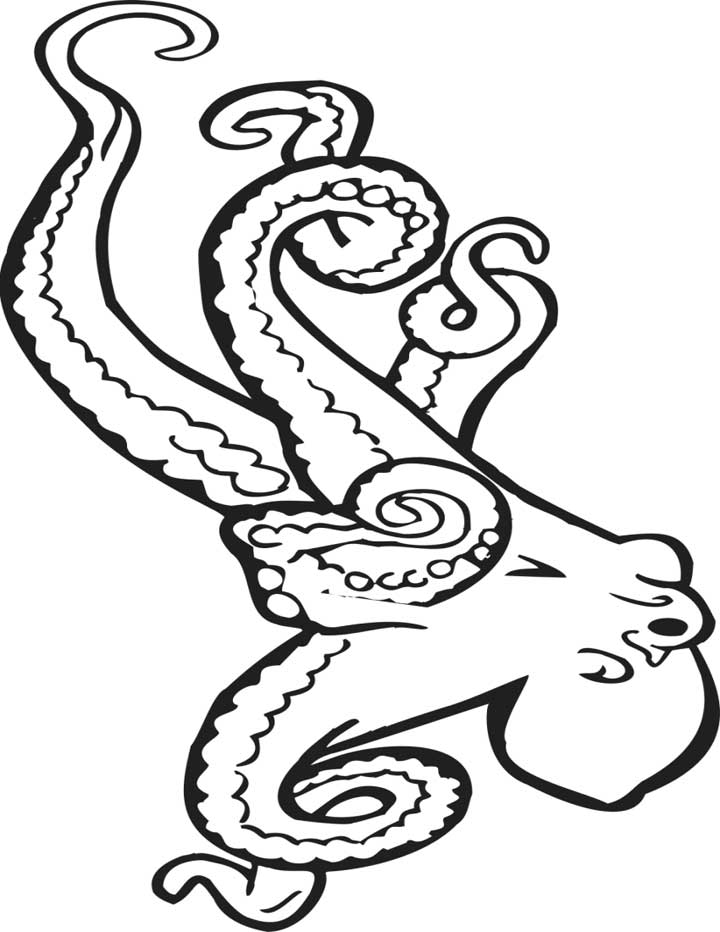 720x932 Octopus Coloring Page For Kids