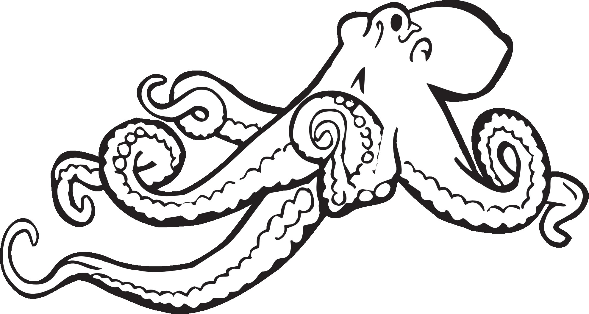 1979x1055 Strange Realistic Octopus Coloring Page Reveal