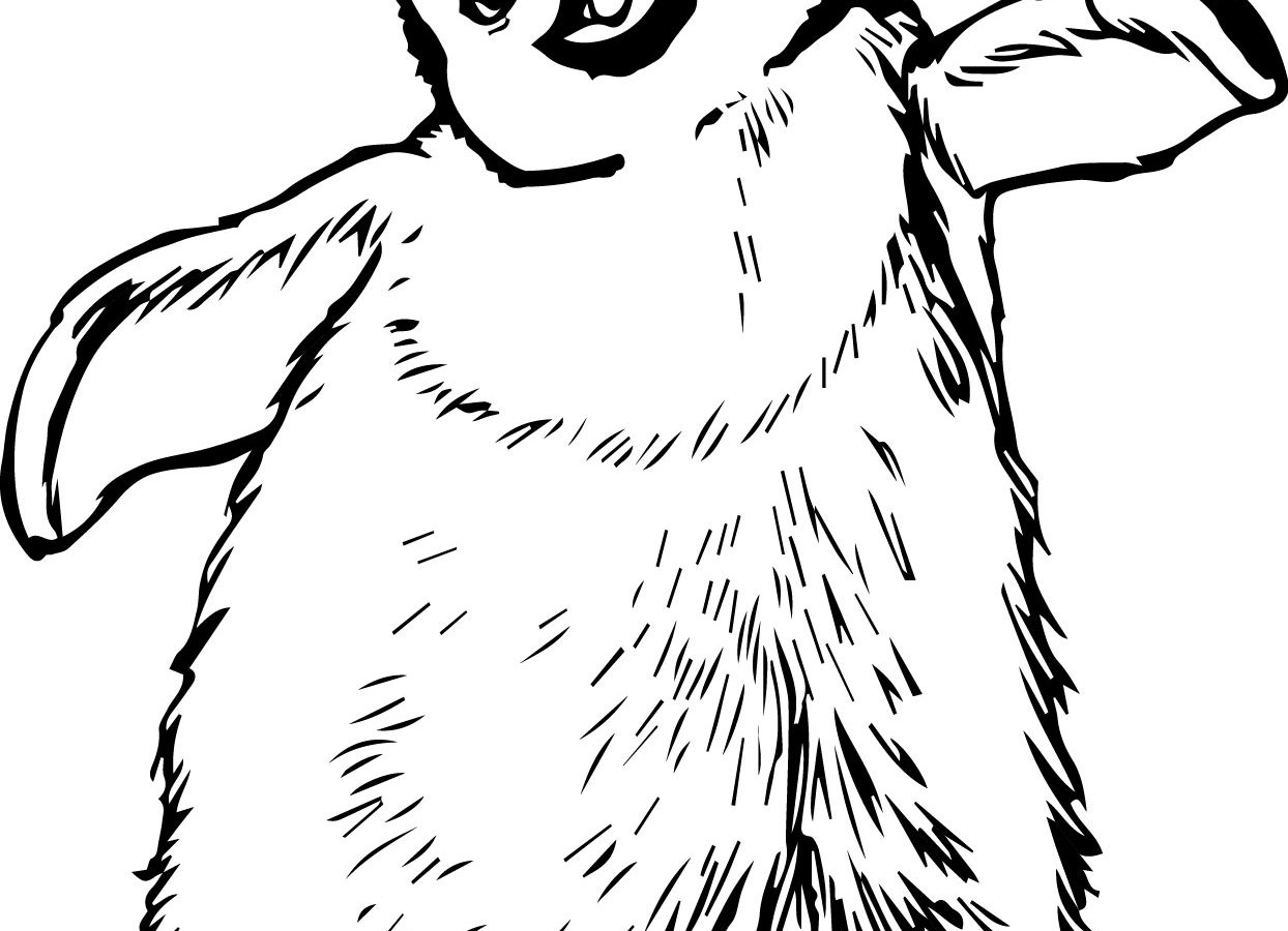 1244x900 Remarkable Emperor Penguin Coloring Page For Kids King Free