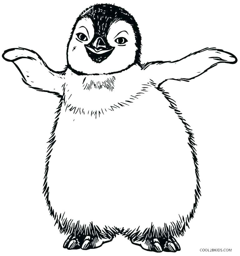 768x821 Coloring Page Penguin Coloring Pages Of Penguins Luxury Penguins