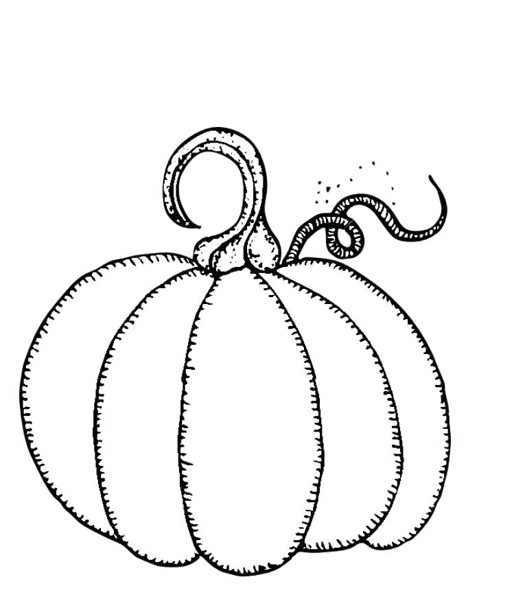 765x886 Free Pumpkin Coloring Pages Free Printable Pumpkins Coloring Pages