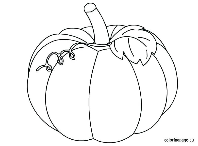 804x595 Printable Pumpkin Coloring Pages For Kids Printable Pumpkin