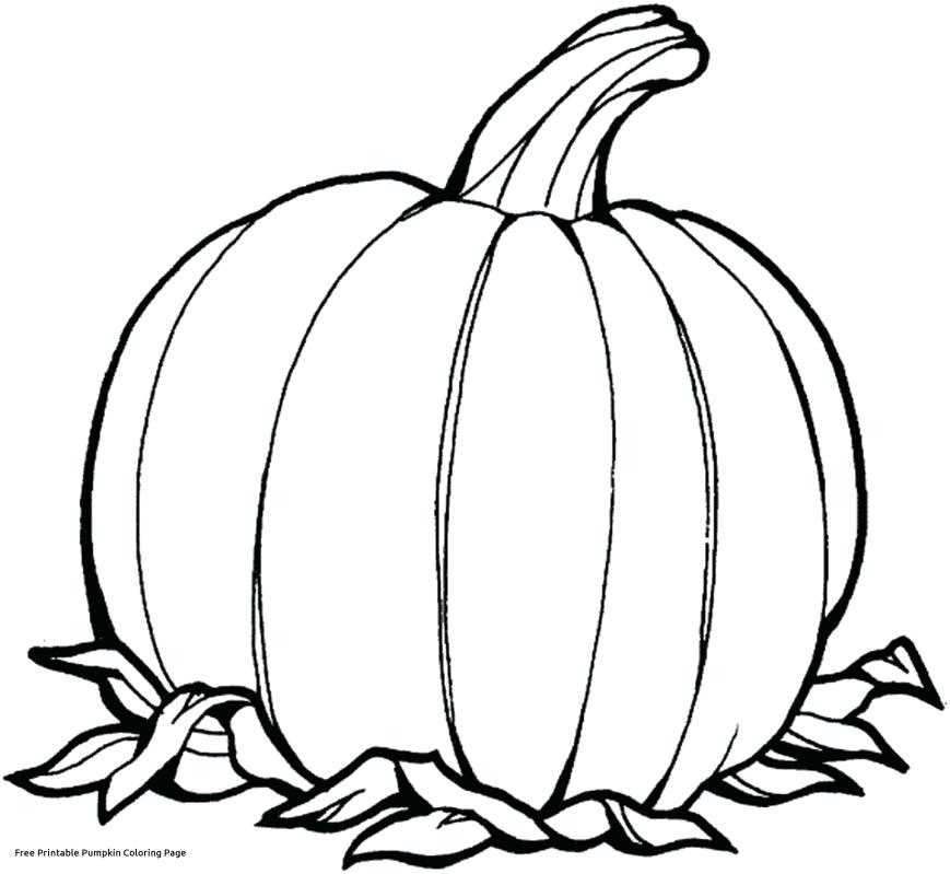 869x799 Pumpkin Coloring Pages For Sunday School
