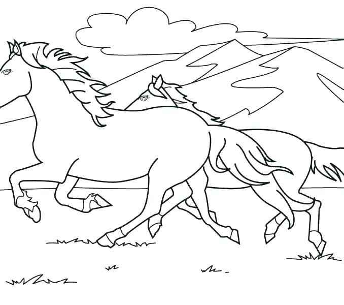 Free Printable Realistic Horse Coloring Pages At Getdrawings Com