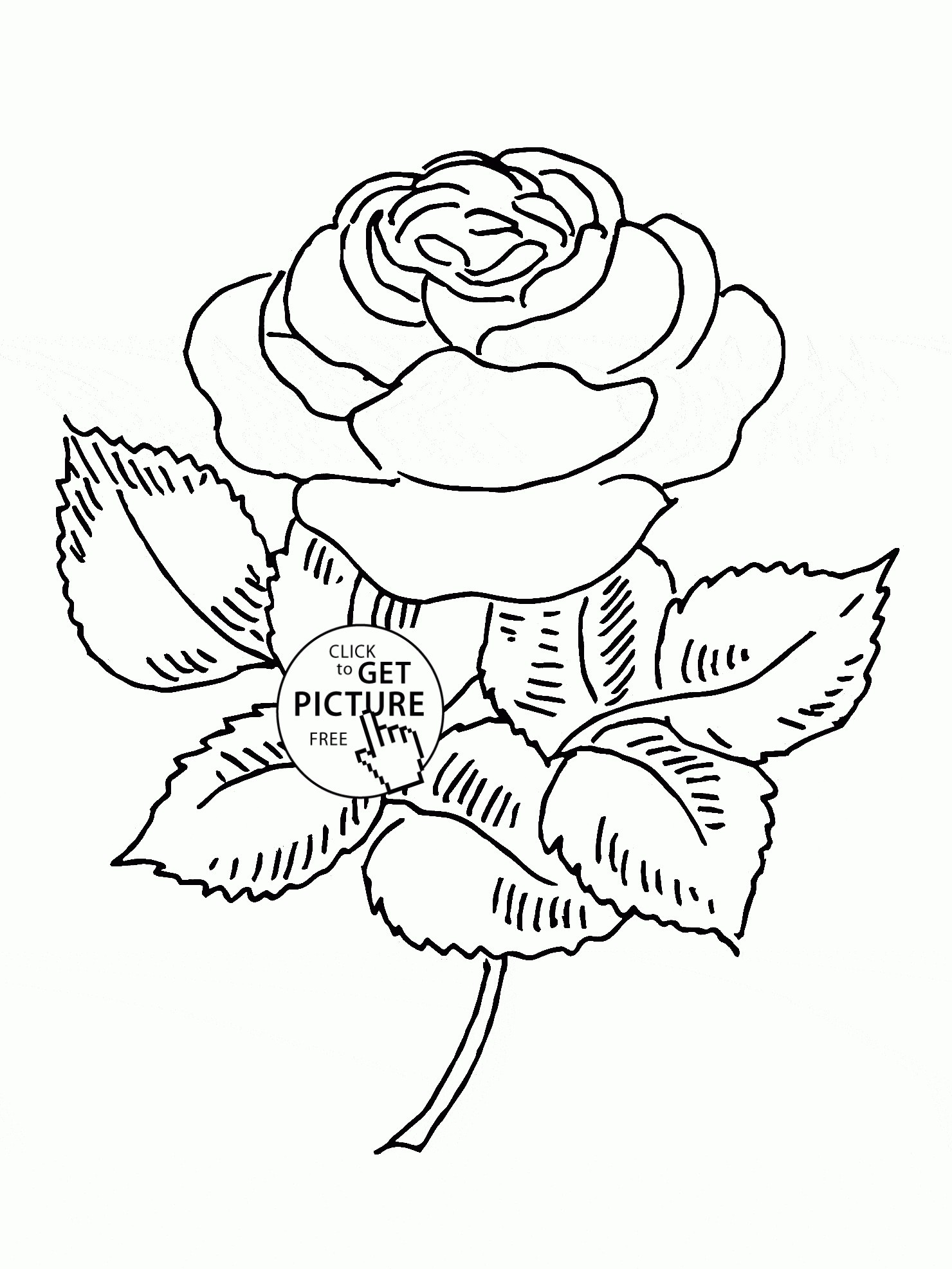 1480x1973 Roses Coloring Pages Free Printable Copy Nice Rose Flower Coloring
