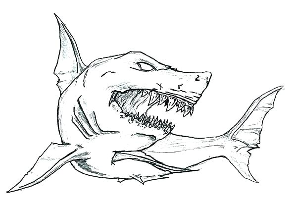 photo relating to Shark Coloring Pages Printable known as Cost-free Printable Shark Coloring Webpages at