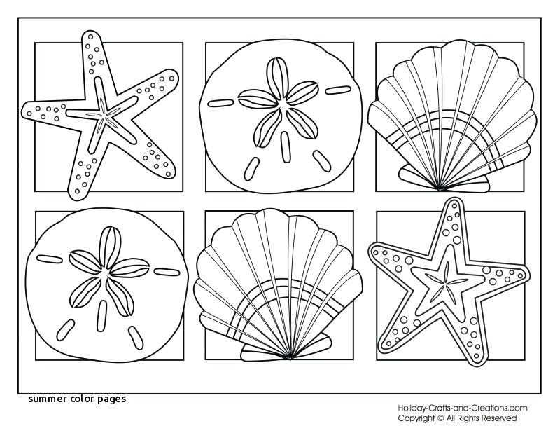 800x618 Printable Beach Coloring Pages Summer Coloring Pages Printable