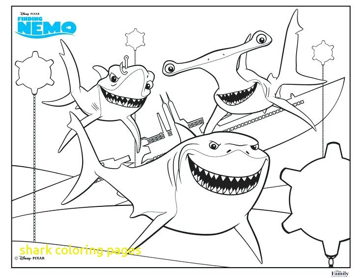 735x567 Shark Coloring Pages With Coloring Shark Fun Free Printable Summer
