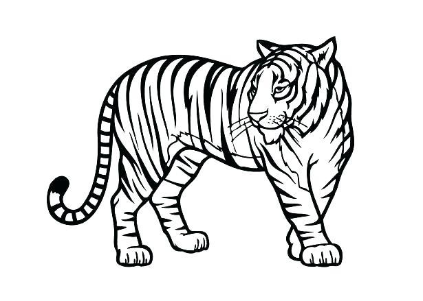 615x439 Printable Animal Coloring Pages Printable Zoo Animal Coloring