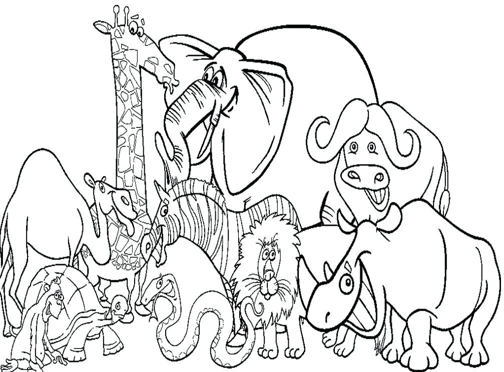 1007x745 Printable Animals Coloring Pages Zoo Animal Color Pages Many
