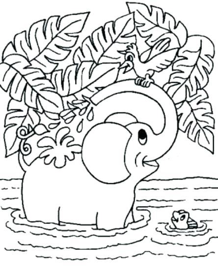 444x543 Zoo Animals Coloring Pages Animal Coloring Pages Free Free