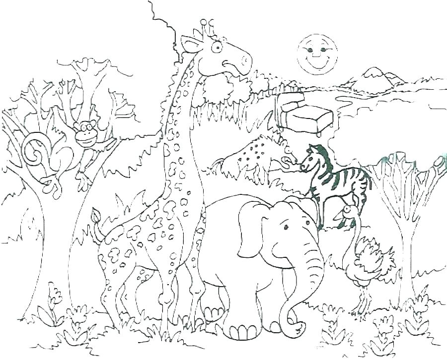 900x724 Zoo Animals Coloring Pages Baby Animals Coloring Pages Energy Cute