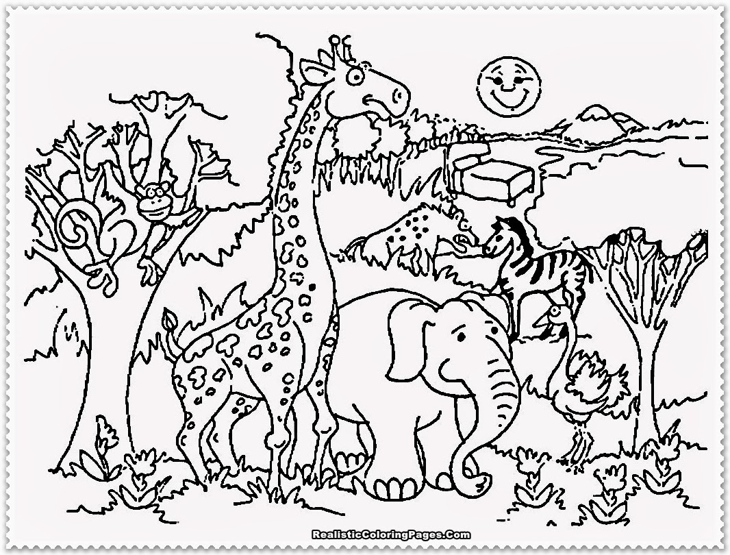 1066x810 Zoo Coloring Pages