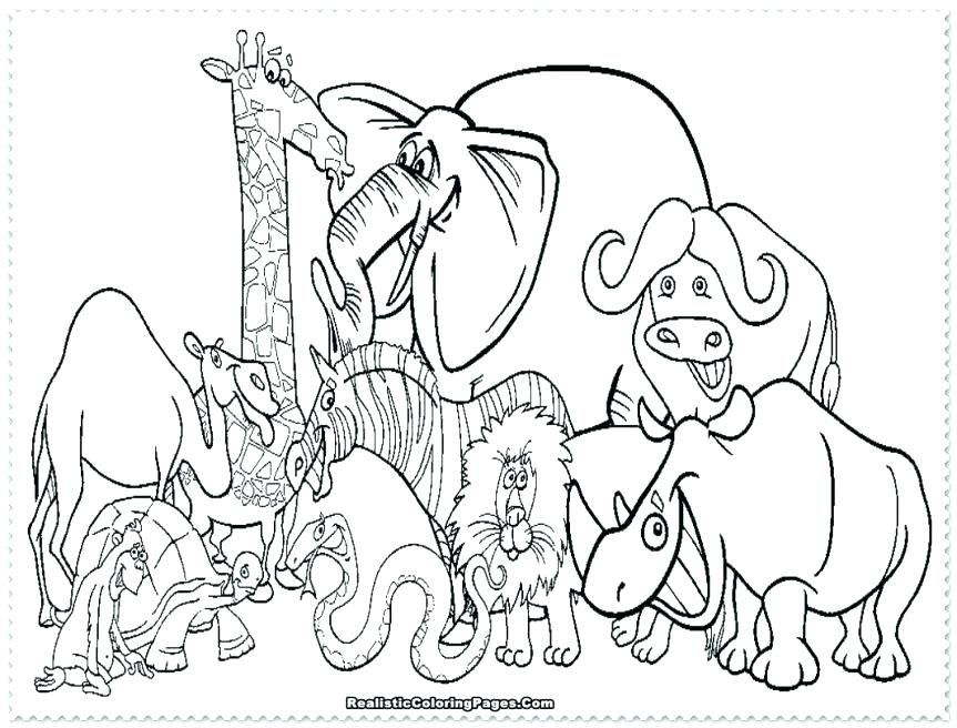 863x656 Animal Coloring Pages To Print Zoo Animal Coloring Page Coloring
