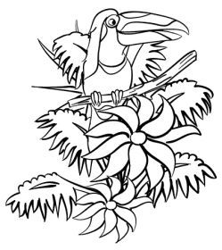 249x280 Free Rainforest Coloring Pages Rainforest Coloring Sheets, Free