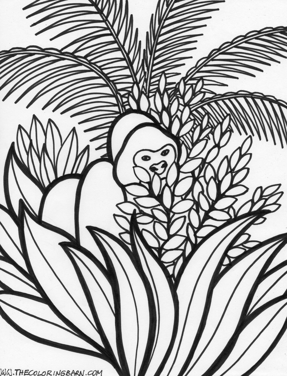 1000x1310 Printable Coloring Pages Jungle Animals Rain Forest Free