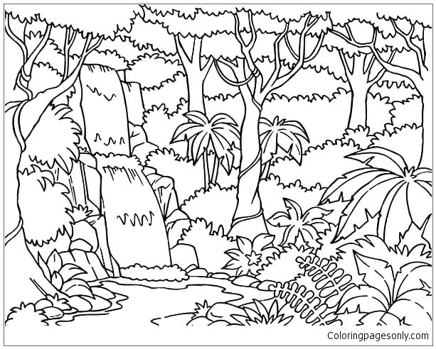 613x492 Rain Forest Coloring Pages Forest Coloring Page Forest Coloring