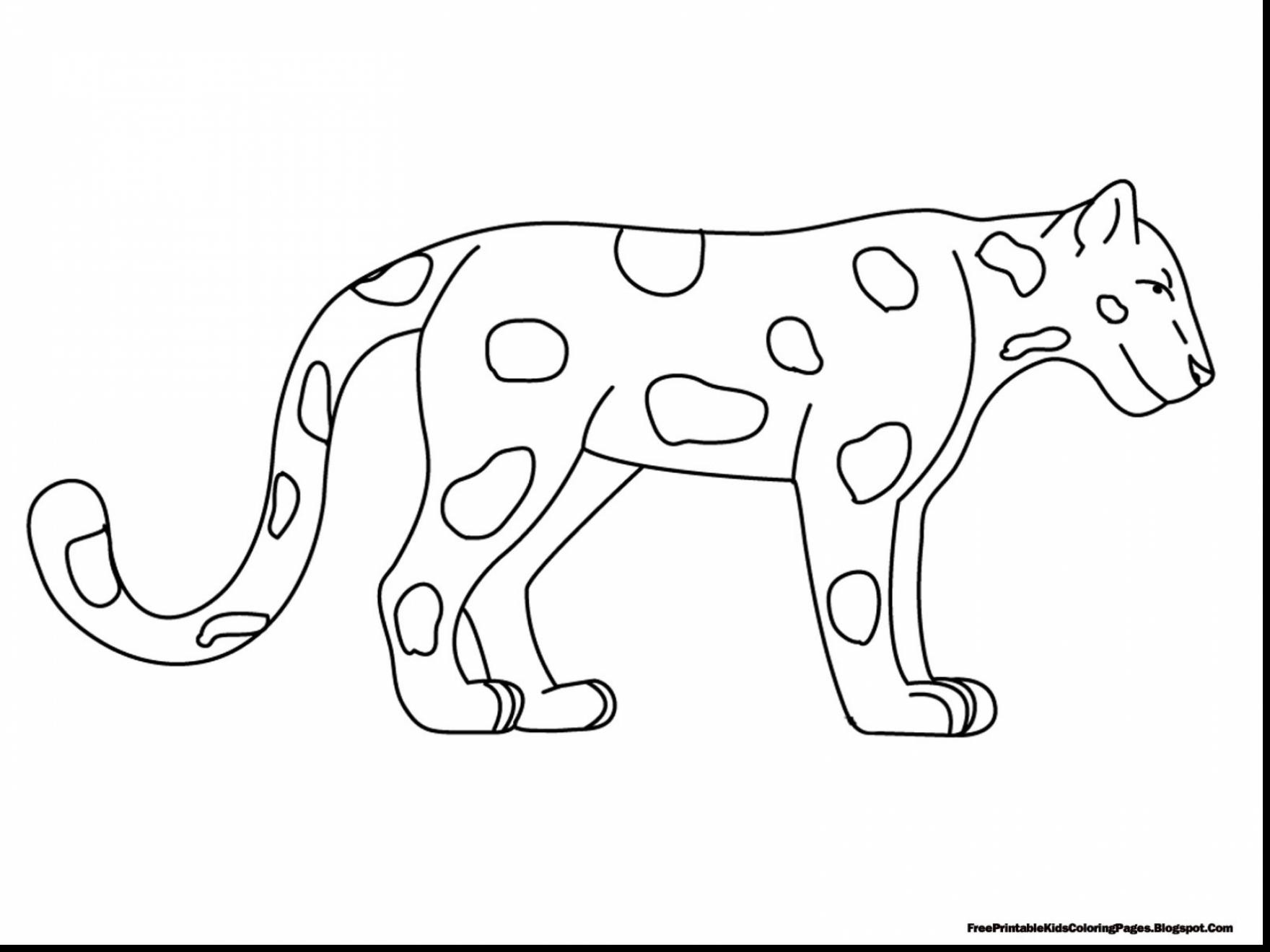 1760x1320 Rainforest Animals Coloring Pages Resume