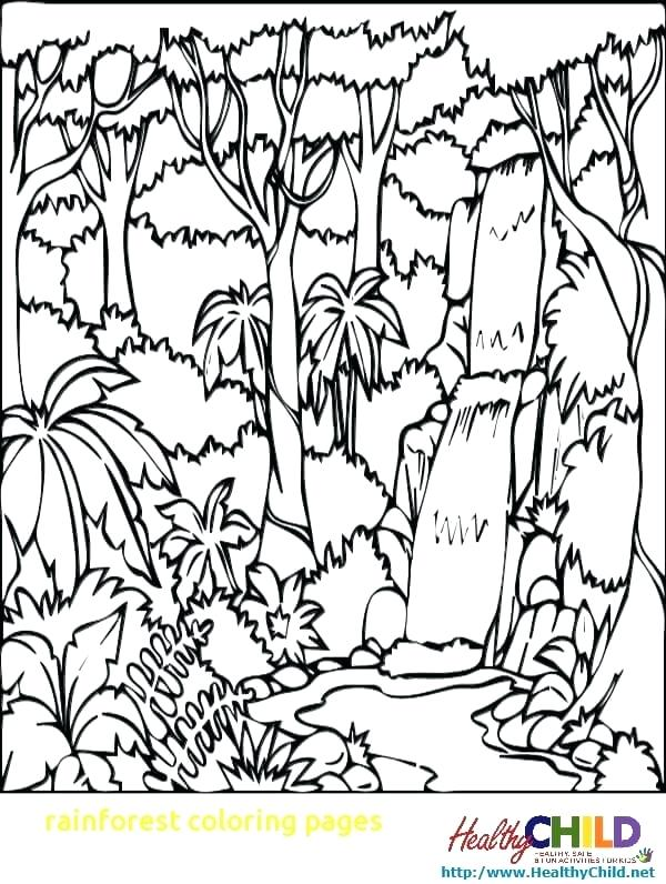 600x796 Rainforest Coloring Pages Coloring Pages With Ideas Coloring Page