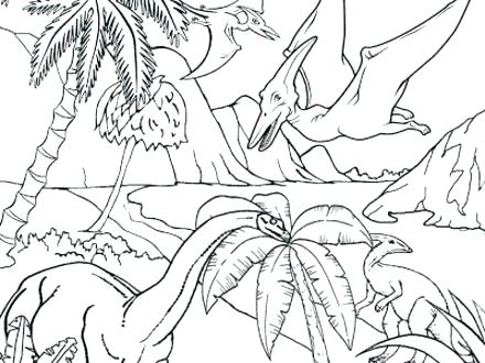 440x330 Rainforest Coloring Pages To Print Rain Forest Coloring Pages Free