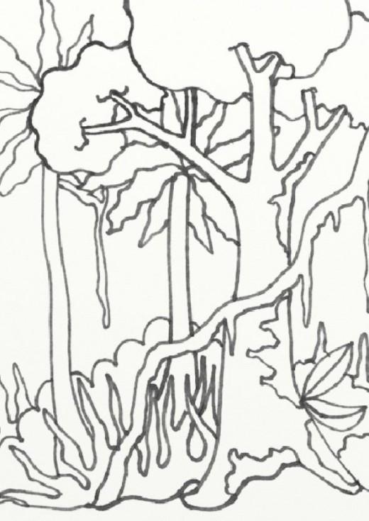 520x735 Rainforest Coloring Pages Unique Free Rainforest Coloring Pages