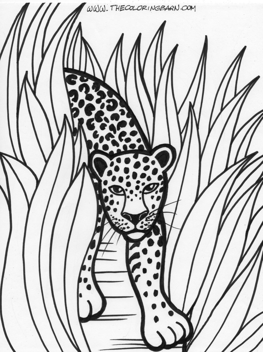 1000x1337 Rainforest Printable Coloring Pages The Coloring Barn Printable