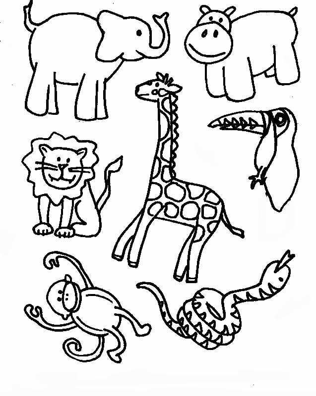 637x800 Tropical Rainforest Coloring Pages Free Printable Coloring
