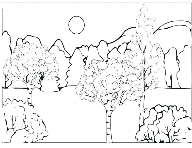 756x585 Coloring Pages Kindergarten Coloring Sheets Coloring Pages Forest