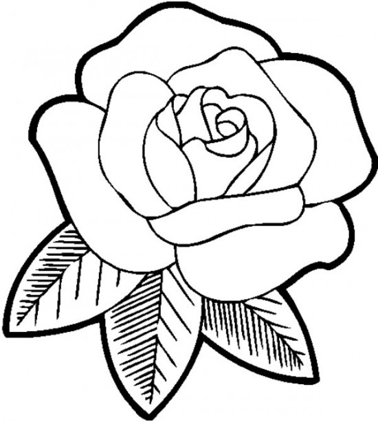 Free Rose Coloring Pages At Getdrawings Com Free For Personal Use