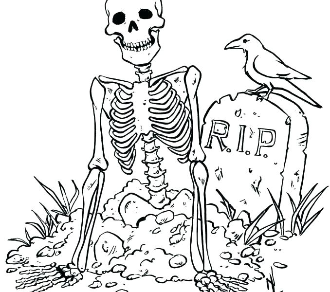 678x600 Skeleton Coloring Page Human Skeleton Coloring Page Skeleton