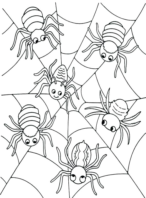600x811 Free Spider Coloring Pages Spider Web Coloring Pages Spider