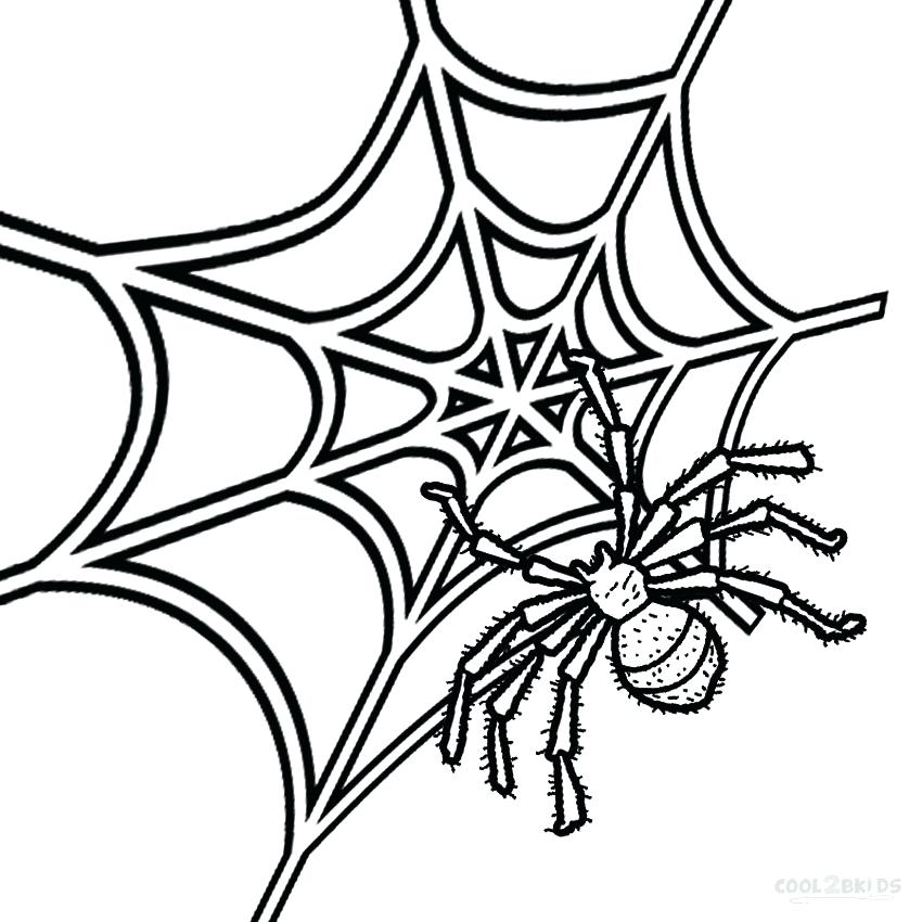 850x850 Spider Web Coloring Page Free Spider Web Coloring Pages Funnel Web