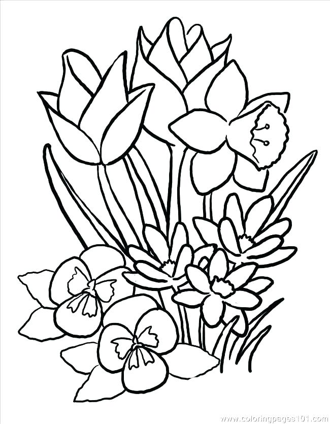 650x835 Simple Flower Coloring Pages Flower Coloring Pages Printable Free