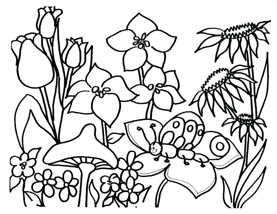 906x700 Spring Coloring Pages Free