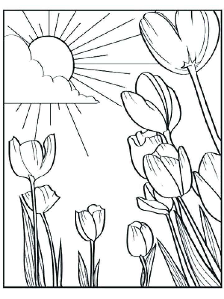 720x960 Spring Coloring Pages Free Spring Coloring Pages Free Colouring