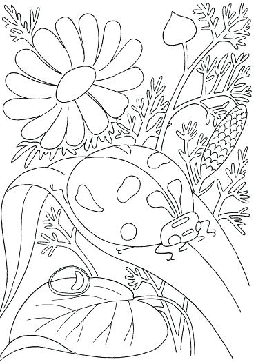 371x525 Spring Printable Coloring Pages Printable For Peaceful Design