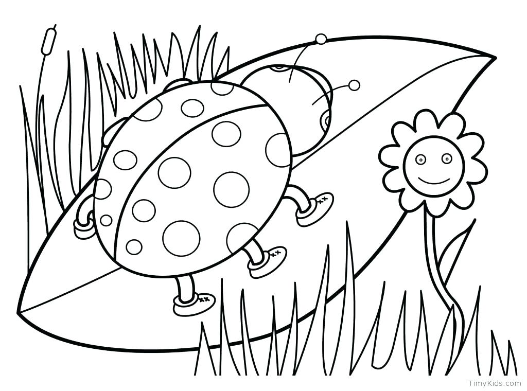 1024x760 Flower Coloring Pages For Adults Or Spring Coloring Images Free