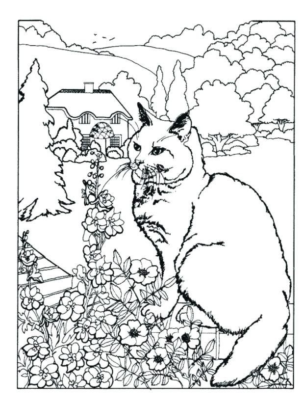 618x823 Free Printable Spring Coloring Pages Plus Spring Coloring Pages