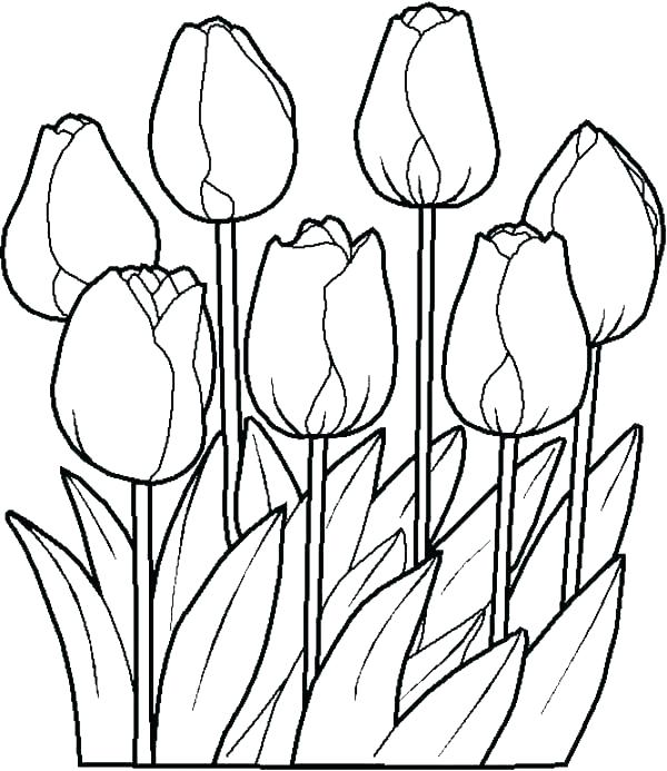 600x693 Printable Spring Coloring Sheets Springtime Coloring Pages Welcome