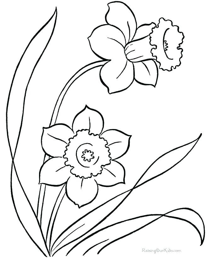 670x820 Easy Spring Coloring Pages For Kids Printable Coloring Sheet Free