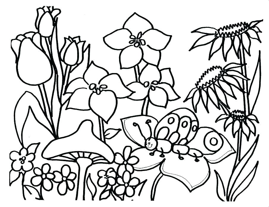 906x700 Free Spring Coloring Pages Spring Coloring Pages Free Printable