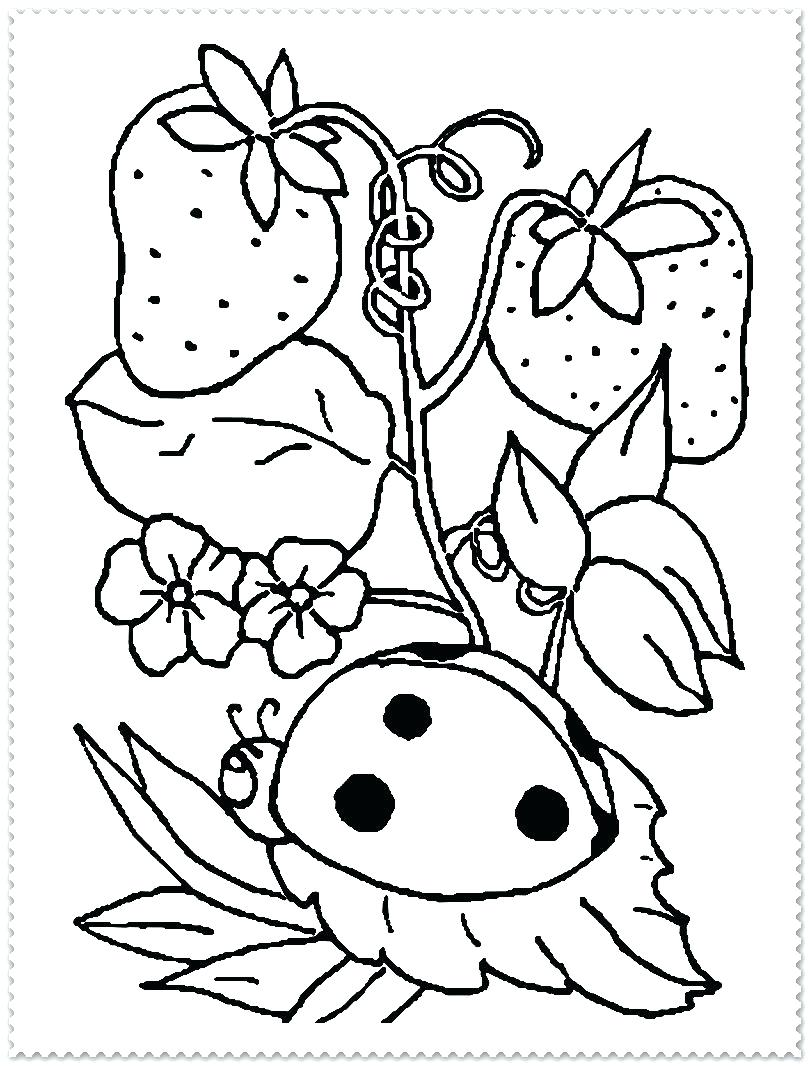810x1066 Spring Coloring Pages