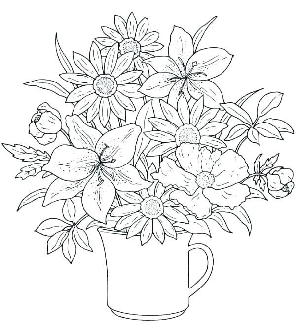 600x666 Spring Coloring Pages Free Picture Spring Colouring Pages Free
