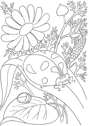 371x525 Free Printable Spring Coloring Sheets Printable Complicated