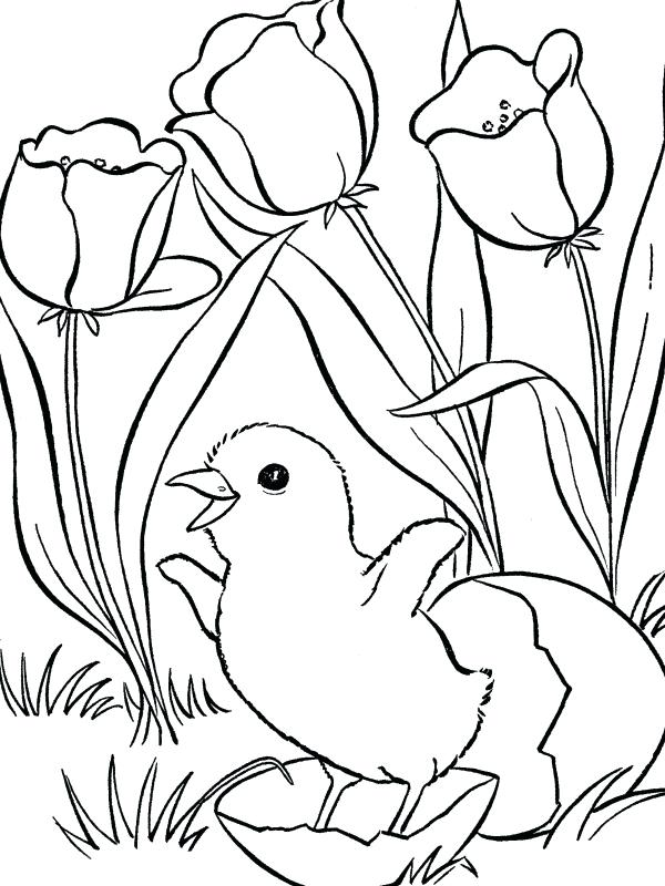 600x800 Free Printable Spring Colouring Sheets Free Spring Color Sheets