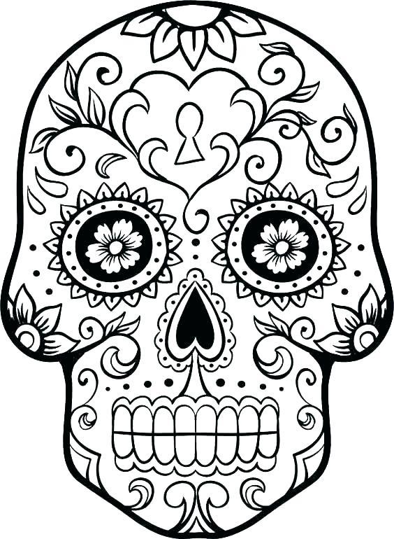 564x770 Sugar Skull Color Pages Sugar Skull Coloring Page Sugar Skull